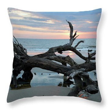 A Touch Of Morning Glory Throw Pillow by Bruce Gourley