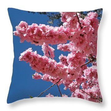A Touch Of Spring Throw Pillow by Kaye Menner