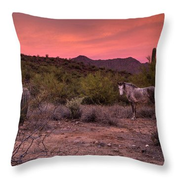A Tranquil Moment Throw Pillow by Sue Cullumber