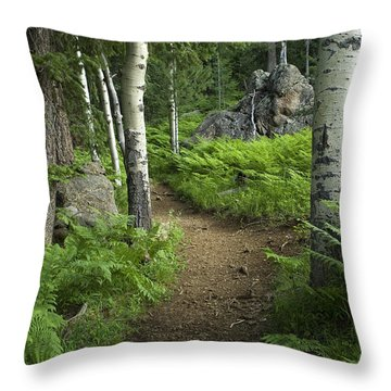A Tranquil Path  Throw Pillow by Sue Cullumber