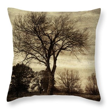 A Tree Along The Roadside Throw Pillow