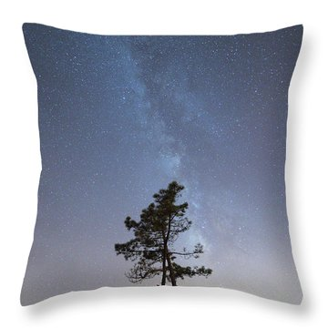 Throw Pillow featuring the photograph A Tree by Bruno Rosa