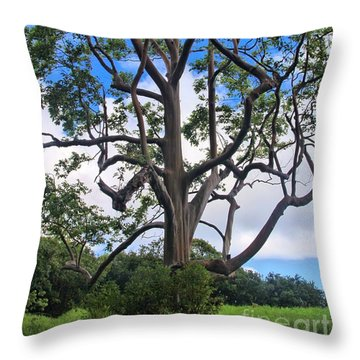Throw Pillow featuring the photograph A Tree In Paradise by DJ Florek