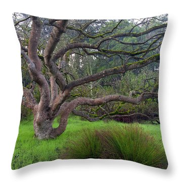 A Tree In The Park  Throw Pillow by Catherine Lau