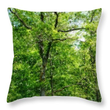 A Tree In The Woods At The Hacienda  Throw Pillow by David Lane