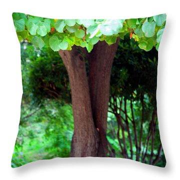 Throw Pillow featuring the photograph A Tree Lovelier Than A Poem by Madeline Ellis