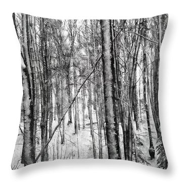 A Tree's View In Winter Throw Pillow