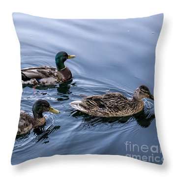 A Trio Of Mallards Throw Pillow