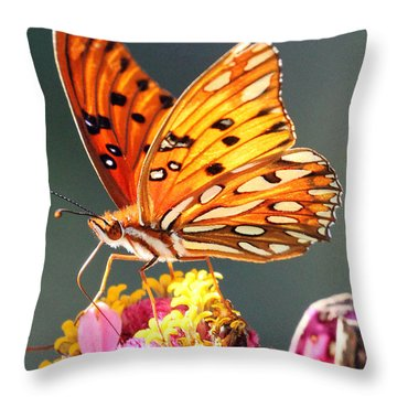 A Troubled Zinnia Throw Pillow