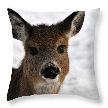 A Very Dear Portrait Throw Pillow by Mike Martin