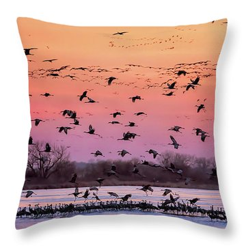 A Vibrant Evening Throw Pillow