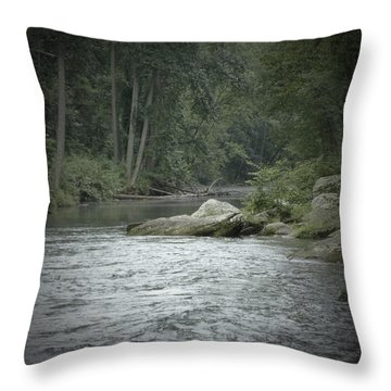 A View Downstream Throw Pillow by Donald C Morgan