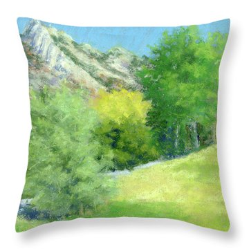 A View From Murray Park Throw Pillow