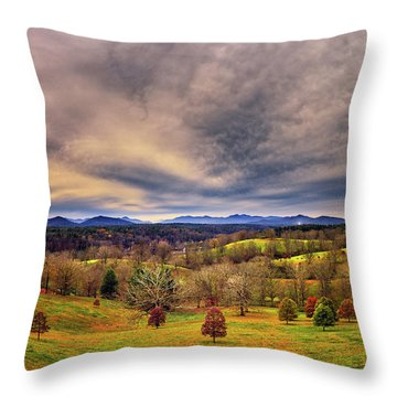 A View From The Biltmore Throw Pillow