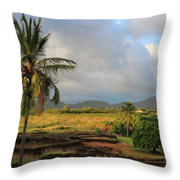 A View Of Prince Kuhio Park Throw Pillow by Bonnie Follett