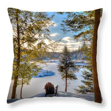 A View Of The Moose Throw Pillow
