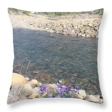 Throw Pillow featuring the photograph A View To A View by Marie Neder