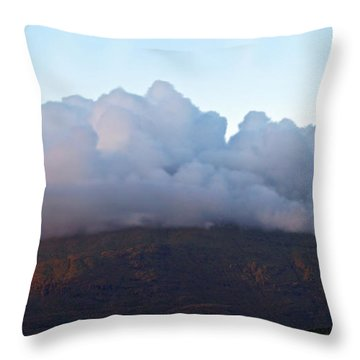 A View To Live For Throw Pillow
