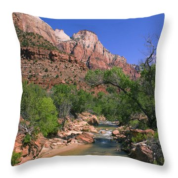 Throw Pillow featuring the photograph A Virgin In Zion by Suzette Kallen