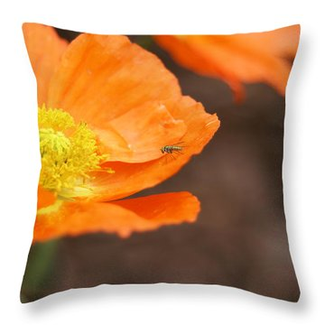 A Visitor Throw Pillow by Heidi Poulin
