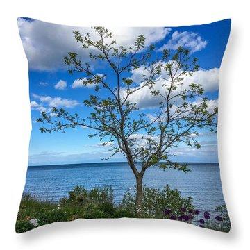 A Walk Along Lake Michigan Throw Pillow