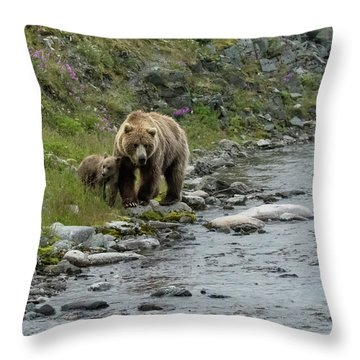 A Walk Along The Creek Throw Pillow