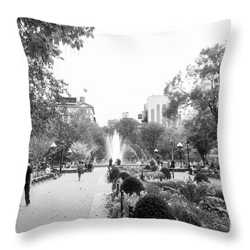 Throw Pillow featuring the photograph A Walk In The Park by Ana V Ramirez