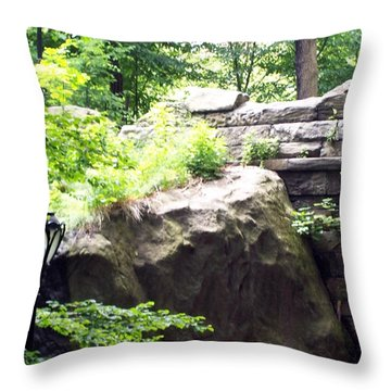 Throw Pillow featuring the photograph A Walk In The Park by Lola Connelly