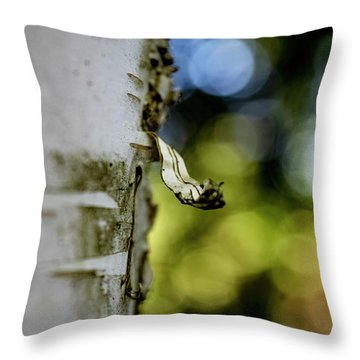 A Walk In The Woods Is Good For The Soul Throw Pillow