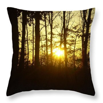 A Walk In The Woods Throw Pillow by Robin Coaker