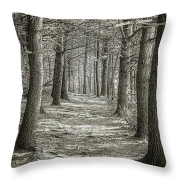 A Walk In Walden Woods Throw Pillow
