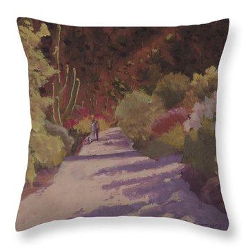 A Walk  On A  Sonoran Desert Road Throw Pillow