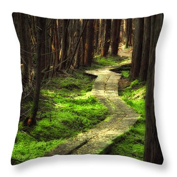 Throw Pillow featuring the photograph A Walk Through The Bog by Robert Clifford