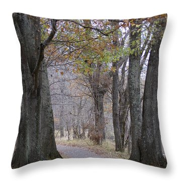 A Walk To Remember Throw Pillow by Heidi Poulin