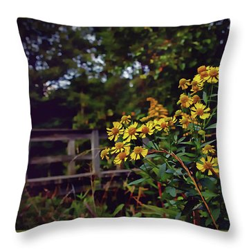 Throw Pillow featuring the photograph A Walk With Wildflowers by Jessica Brawley