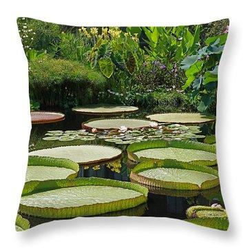 Throw Pillow featuring the photograph A Water Garden by Byron Varvarigos