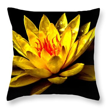 A Water Lily Throw Pillow