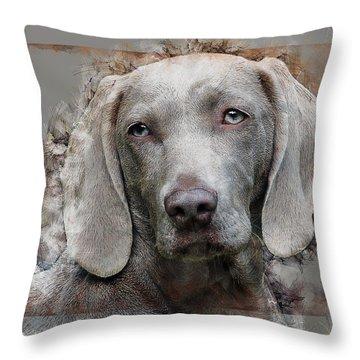 A Weimaraner Throw Pillow