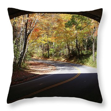 A Well Rounded Perspective Throw Pillow
