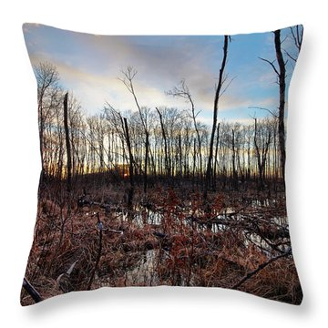 A Wet Decay Throw Pillow