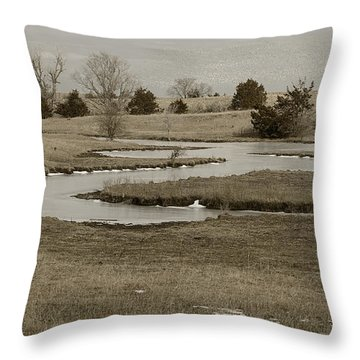 A Winding Creek In Winter As Geese Fly Overhead Throw Pillow