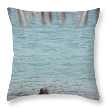 A Window With A View Throw Pillow