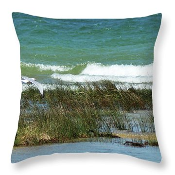 Throw Pillow featuring the photograph Riding The Wind by Sally Sperry