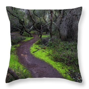 A Windy Path Throw Pillow