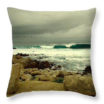Throw Pillow featuring the photograph A Winter Day At The Beach by Joyce Dickens
