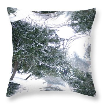Throw Pillow featuring the photograph A Winter Fractal Land by Skyler Tipton