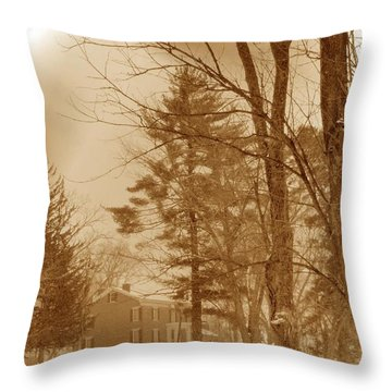 Throw Pillow featuring the photograph A Winter Scene by Skyler Tipton