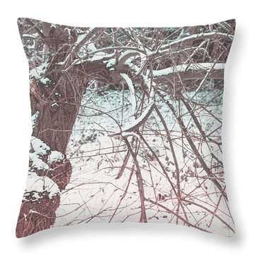 A Winter Tree Throw Pillow
