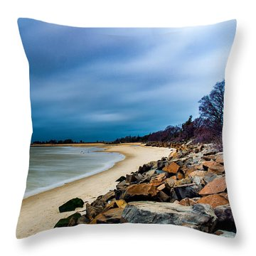 A Winter's Beach Throw Pillow