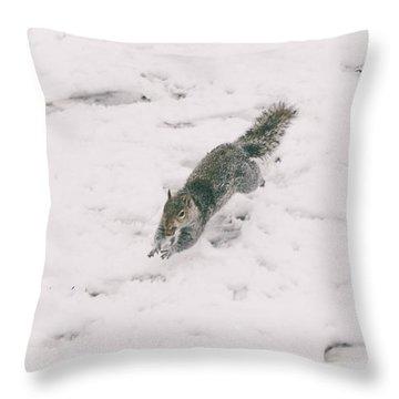 Christmas Squirrel Throw Pillows